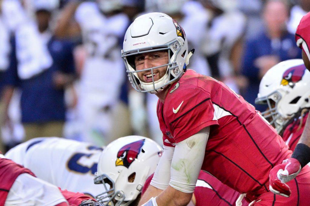 Rosen during his one year in Arizona © Matt Kartozian-USA TODAY Sports